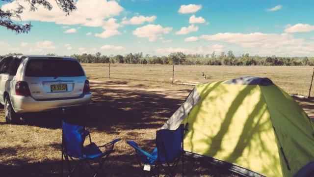 Birds on Barron Campground